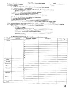 Endocrine Guide Worksheet