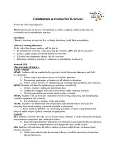 Endothermic and Exothermic Reactions Lesson Plan