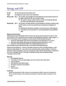 Atp worksheets 9th