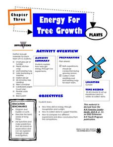 Energy for Tree Growth Lesson Plan