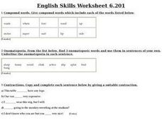 English Skills Worksheet 6.201 Worksheet