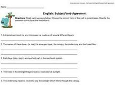 English: Subject/Verb Agreement Worksheet