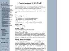 Entrepreneurship: Will it Work? Lesson Plan