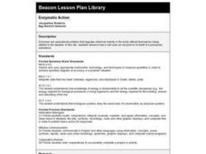 Enzymatic Action Lesson Plan