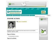 Enzyme Action Lesson Plan