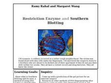 Enzyme and Southern Blotting Lesson Plan