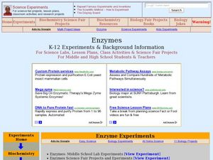 Enzymes Lesson Plan
