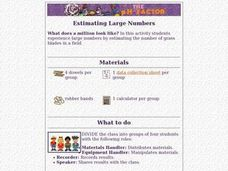 Estimating Large Numbers Lesson Plan