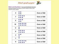 Even and Odd Number Exercise Worksheet