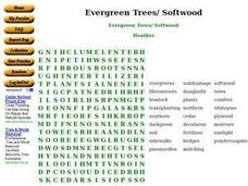 Evergreen Trees & Softwood Worksheet
