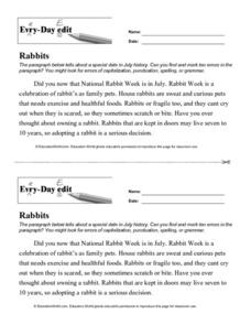 Every Day Edit - Rabbits Lesson Plan
