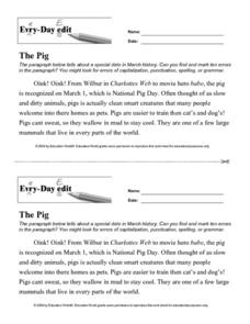 Every Day Edit - The Pig Worksheet