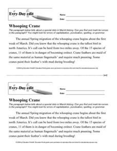 Every Day Edit - Whopping Crane Worksheet