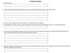 Excretion Review Sheet Worksheet
