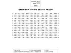 Exercise 43 Word Search Puzzle Worksheet