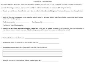 Exploring the Kingdom Protista Worksheet