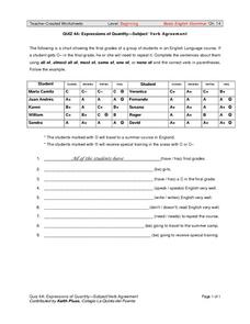 Expressions of Quantity-Subject/Verb Agreement Worksheet