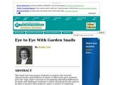 Eye to Eye With Garden Snails Lesson Plan