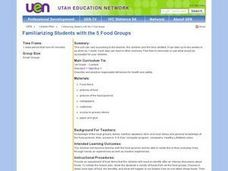 Familiarizing Students with the Five Food Groups Lesson Plan