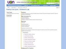 Family Life Cycle - Children's Lab Lesson Plan