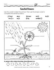 Fanciful Flowers Worksheet