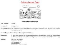 Farm Animal Coverings Lesson Plan