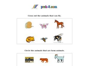 Farm Animals and Flying Animals Worksheet