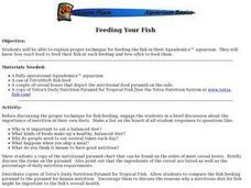 Feeding Your Fish Lesson Plan
