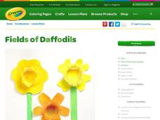 Fields of Daffodils Lesson Plan