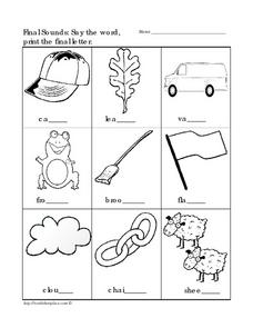 Final Sounds: Say the Word and Print the Letter 2 Worksheet