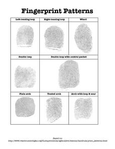 Fingerprint Patterns Worksheet