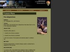 Fire Adaptations Lesson Plan