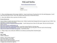 Fish And Turtles Lesson Plan