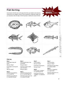 Fish Sorting Worksheet
