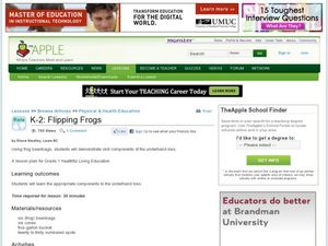 Flipping Frogs Lesson Plan