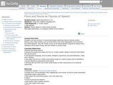 Flora and Fauna as Figures of Speech Lesson Plan