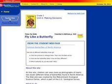 Fly Like a Butterfly Lesson Plan