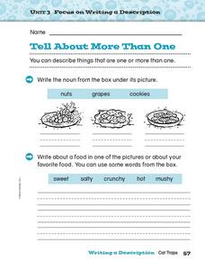 Focus on Writing a Description - More Than One Worksheet