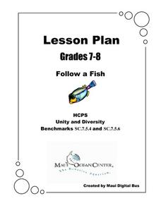 Follow a Fish Lesson Plan