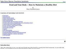Food and Your Body -- How to Maintain a Healthy Diet Lesson Plan