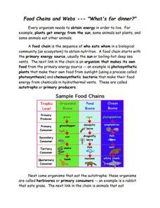 Food Chain Trophic Levels Worksheet S Ukrob