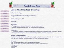 Food-Group Tag Lesson Plan