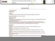 Food Web Follies Lesson Plan