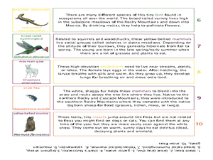 For Creative Minds: Mountain Ecosystems Worksheet
