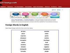 Foreign Words in English Worksheet