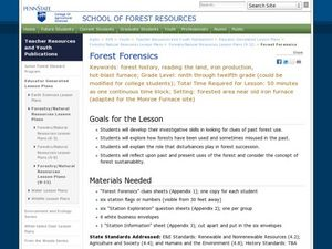 Forest Forensics Lesson Plan