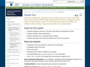 Forest Fun Lesson Plan