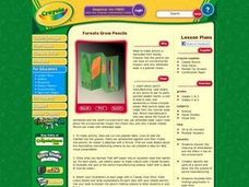 Forests Grow Pencils Lesson Plan