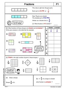 Fractions- Fraction Strips Lesson Plan