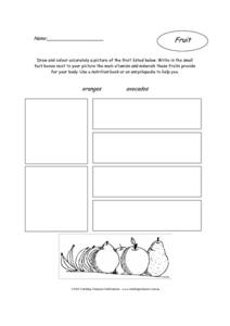 Fruit Activity: Oranges and Avocados Worksheet